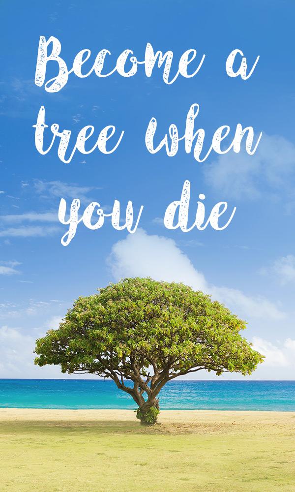 Memorial Tree Urns