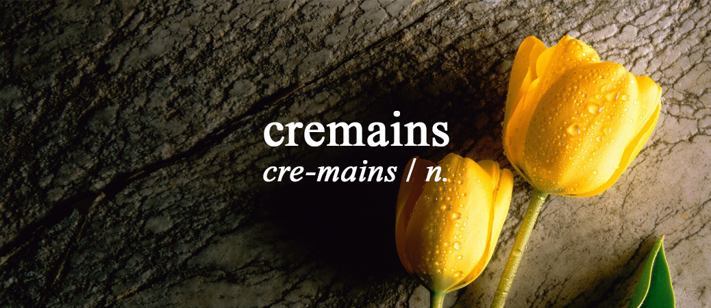Definition of Cremains