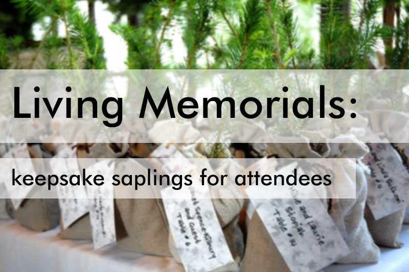 Keepsake Saplings