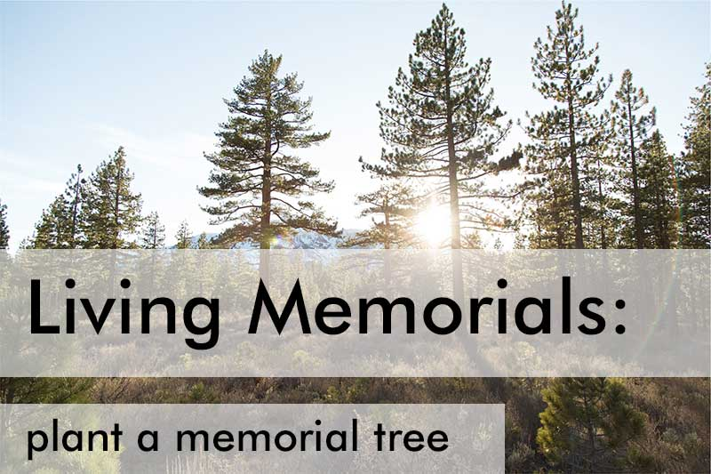 Living Memorial Ideas