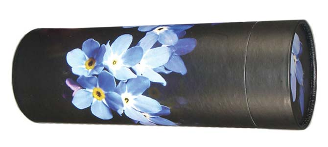 Forget Me Not Meaning and Symbolism