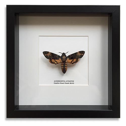 Framed Art Gifts for Funeral Directors & Morticians