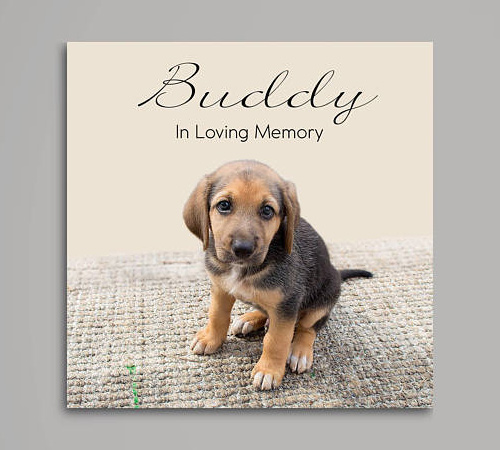 Pet Memorial Photo Canvas Personalized