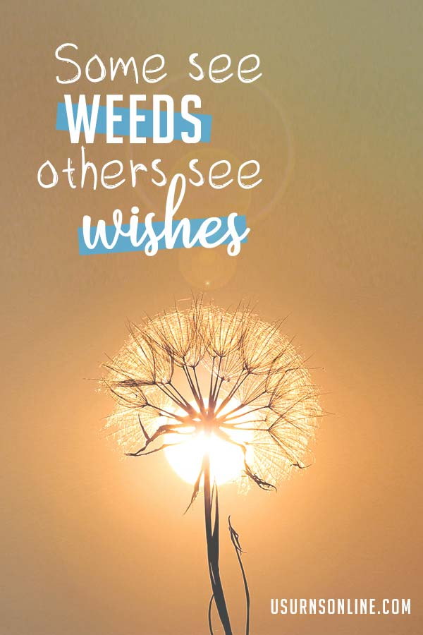 Some see weeds, others see wishes (dandelion quote)