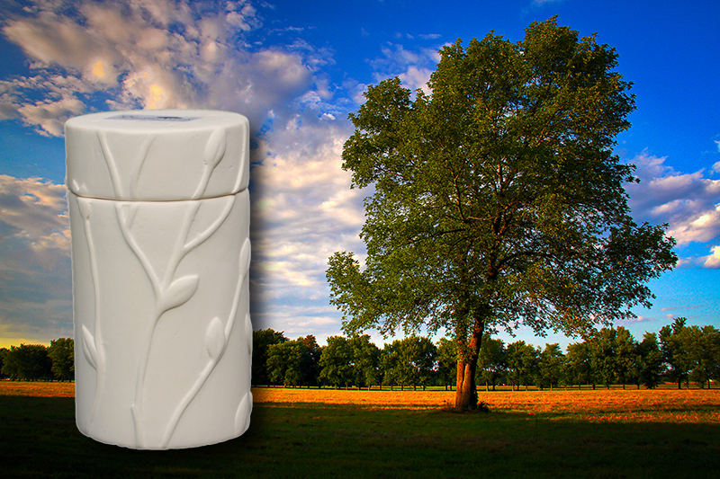 Oak Tree Memorial Urn
