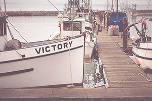 Ocean Scattering Ship