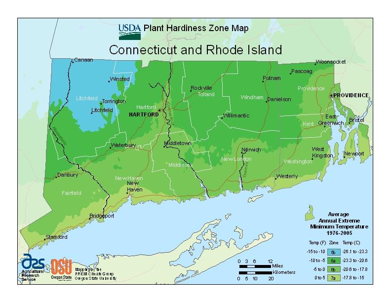 Memorial Tree Urns for Rhode Island