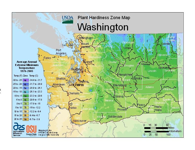 Washington State Memorial Tree Urns