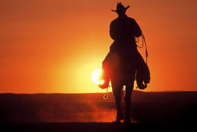 Horse & Rider Cremation Urn