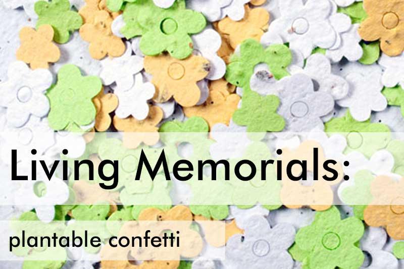Plantable Confetti