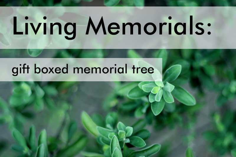 Living Memorial Gifts