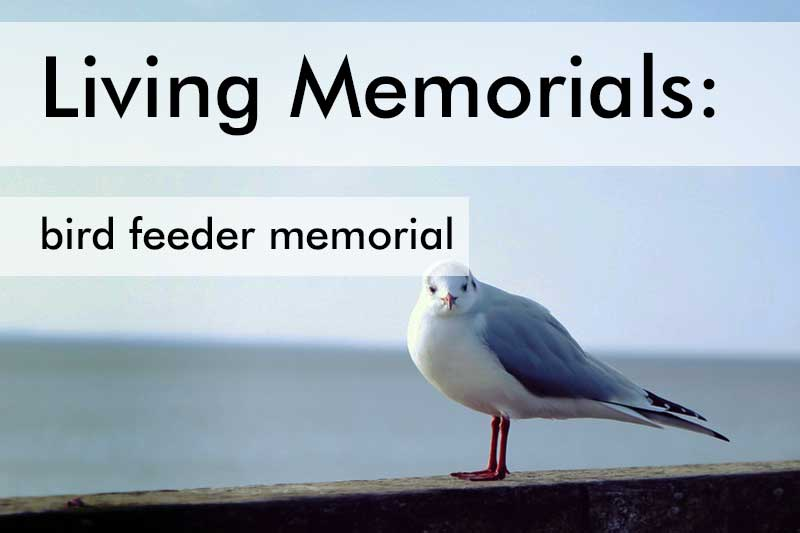 Living Memorial Gift Ideas
