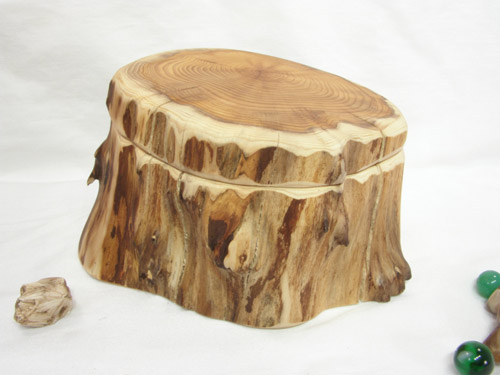 Tree trunk cremation urn
