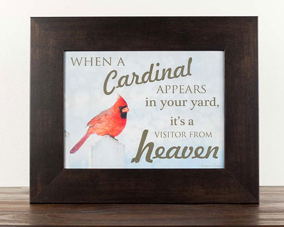 When A Cardinal Appears In Your Yard Its A Visitor From Heaven