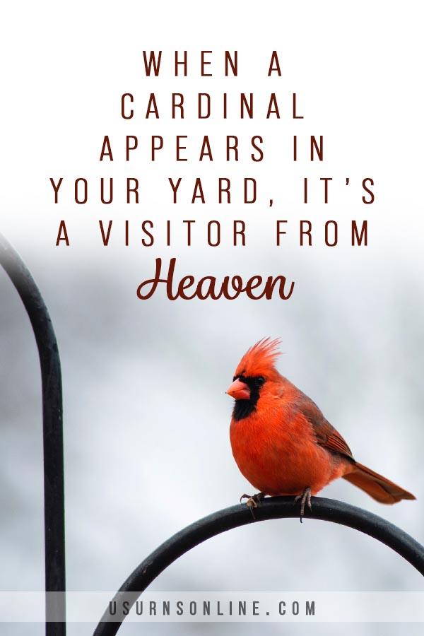 Cardinal memorial quote