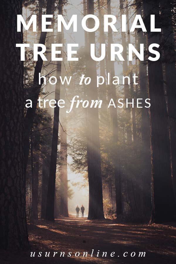Plant Memorial Tree Urns