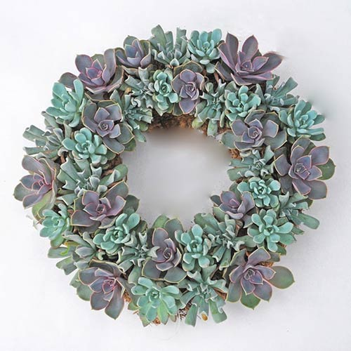 Succulent Memorial Wreath Sympathy Gift Idea
