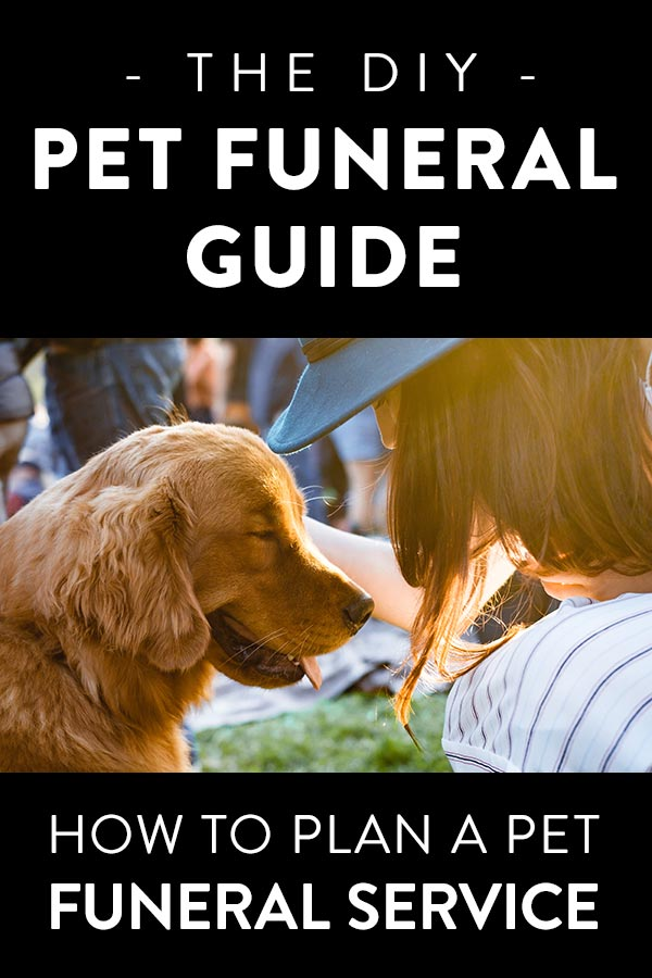 How to plan a pet funeral or memorial service