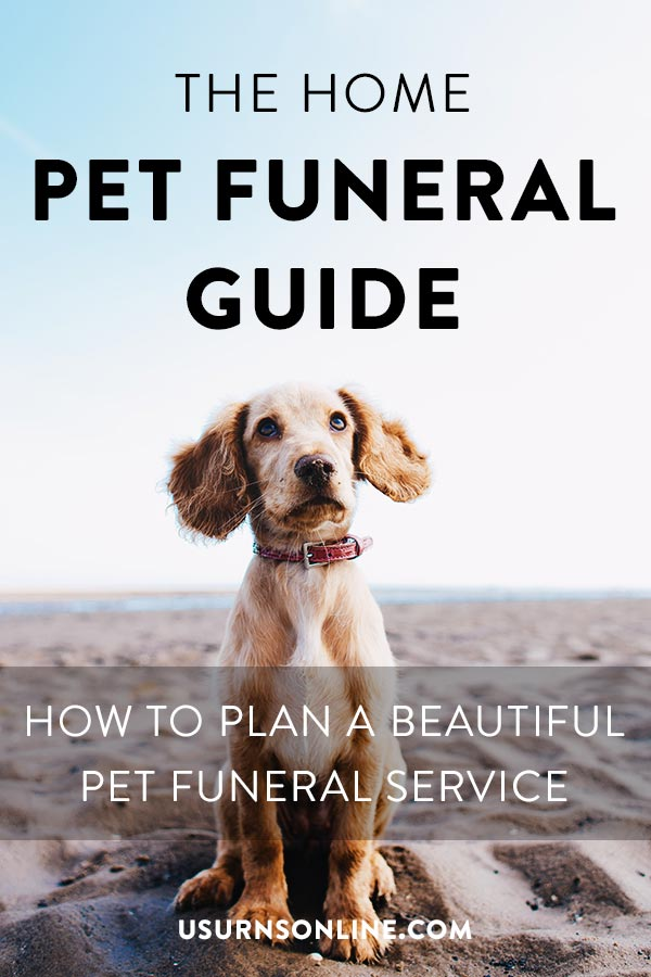 How to have a DIY pet funeral, disposition, and memorial service
