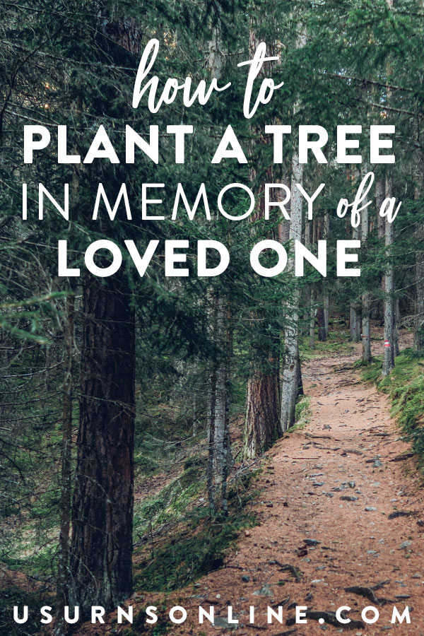 Plant a Tree In Memory of a Loved One