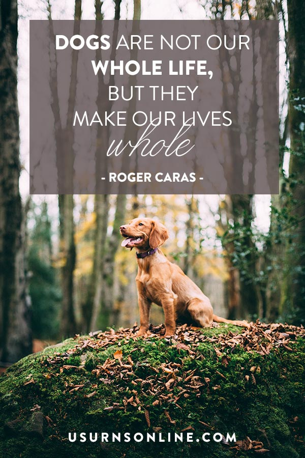 Dogs make our lives whole quote