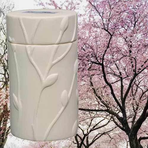 Cremation Urns for Mom - Plant a Tree from Ashes