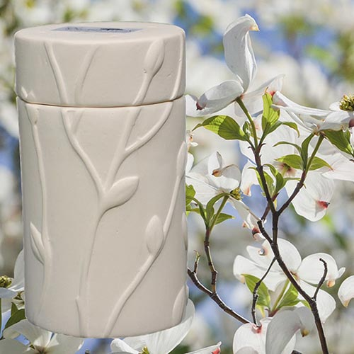 Biodegradable urn for planting cremated remains