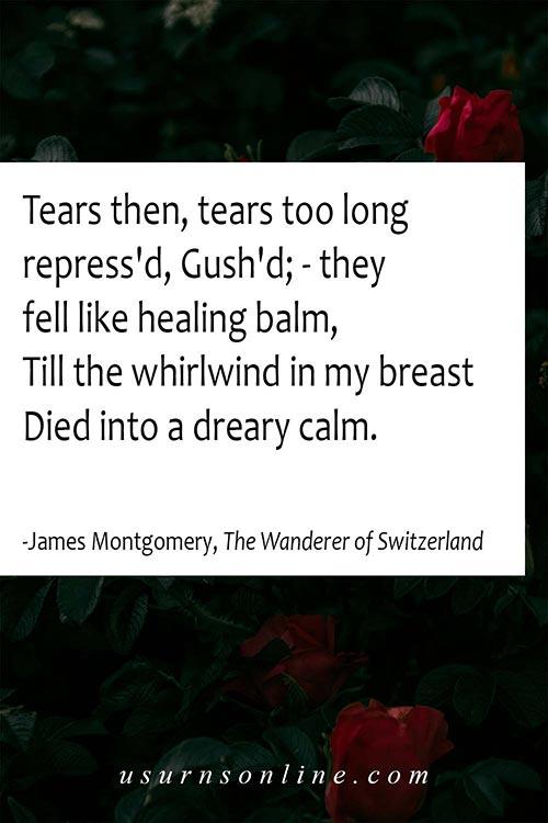 Quotes Over Grief- James Montgomery, The Wanderer of Switzerland