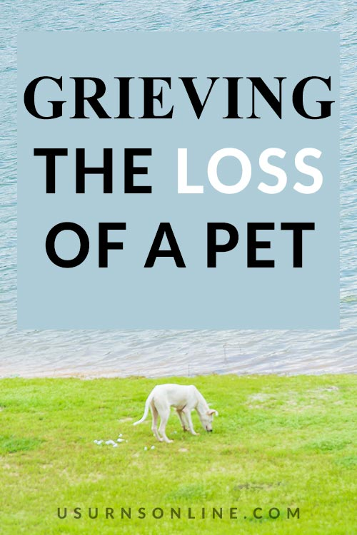 What to Do When Grieving the Loss of a Pet